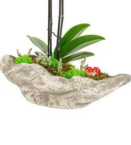 Kaya Serisi 2 Dal Mini Mor Orkide Tasarım