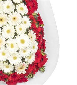 Kırmızı Beyaz Gerbera Tebrik Çelengi