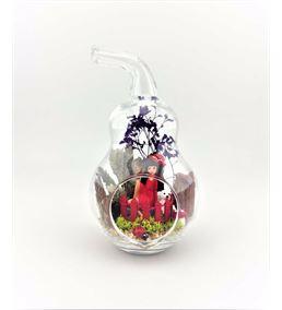 Kuru Çiçek Teraryum Ayıcıklı Kız-Ebama0001