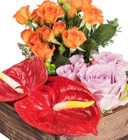 La Rambla Flowers Tasarım Çiçek Aranjmanı