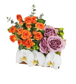La Sagrada Familia Tasarım Çiçek