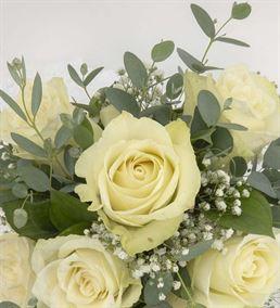 Les Planetes Kütükte 7 Beyaz Güller