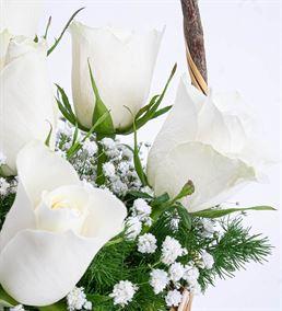 Martha Serisi 7 Beyaz Gül Çiçek Sepeti Aranjmanı