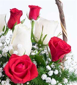 Martha Serisi 5 Kırmızı 4 Beyaz Gül Çiçek Sepeti