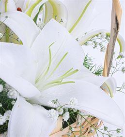 Martha Serisi Mis Kokulu Beyaz Lilyum Çiçek Sepeti