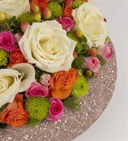 Massa Lombarda Colour Flowers