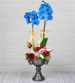 Mavi Orkide, Kazablanka Ve Gül Aranjmanı