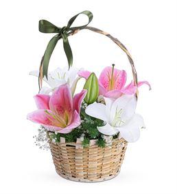 Mis Doğal Kokulu Beyaz Pembe Lilyum Çiçek Sepeti