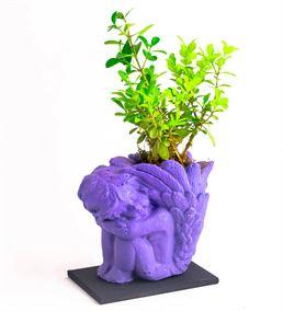 Mor Melek Figür Buxus Bozai Tasarım