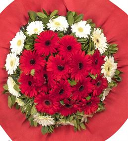 Mutluluklar Kırmızı Gerbera Kutlama Çelengi