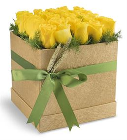 Özel Kutusunda 20 Sarı Güller
