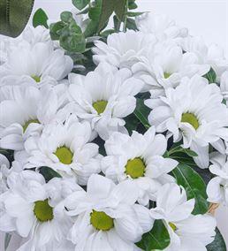 Papatya Esintisi Çiçek Sepeti Aranjmanı
