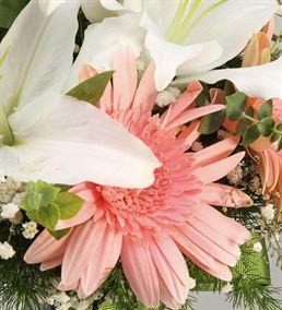 Mis Kokulu Pembe Beyaz Zarif Çiçekler