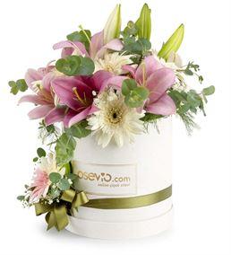 Pescara Kutu Pembe Lilyum ve Beyaz Gerbera Çiçeği