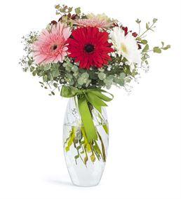 Renk Cümbüşü Mevsim Çiçekleri
