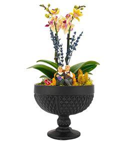 Rita Serisi Mini Sarı Orkide Serisi