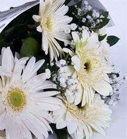 Saf Duygular 5 Beyaz Gerbera Çiçek Buketi