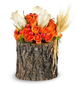 Santo Stefano Tasarım Çiçek
