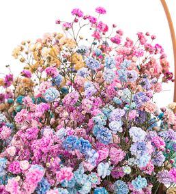 Çiçek Sepette İthal Rengarenk Cipsofilya Tasarım