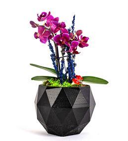 Triangle Serisi Mini Orkide Tasarım - Black