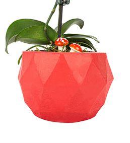 Triangle Serisi Tek Dal Mini Orkide Tasarım - Red