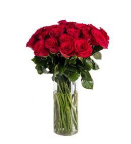 Vazoda 41 Kırmızı Güller
