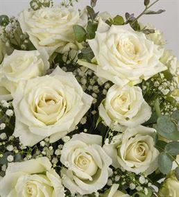 White Beauty Kutuda 30 Beyaz Güller