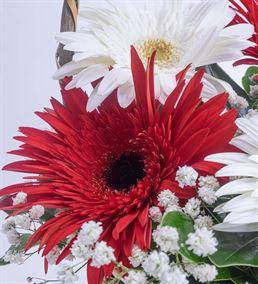 Yaz Güneşi 3 Kırmızı 2 Beyaz Gerbera Çiçek Sepeti