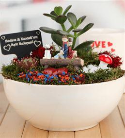 Romantik Aşıklara Özel Canlı Bitki Sukulent Bahçes
