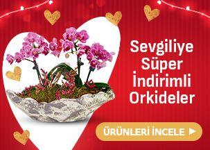 Sevgiliye Süper İndirimli Orkideler!