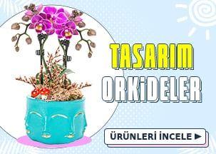 Süper İndirimli Tasarım Orkide Aranjmanları!