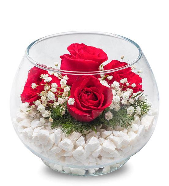 Akvaryum Vazoda 5 Kırmızı Güller