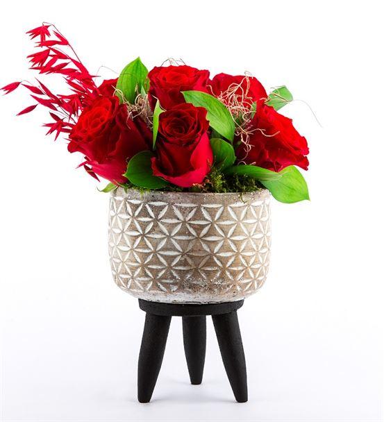 Ayaklı Saksı ve Kırmızı Güller