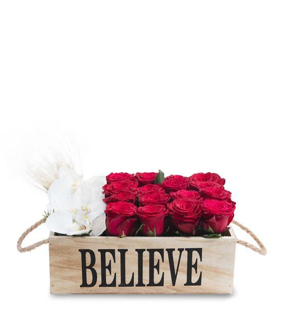 Barcellona Pozzo Believe Flowers
