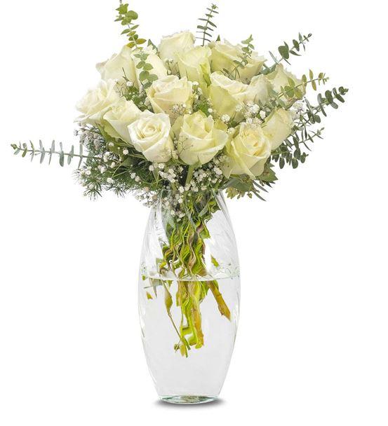 Beyazın Asaleti 15 Beyaz Güller