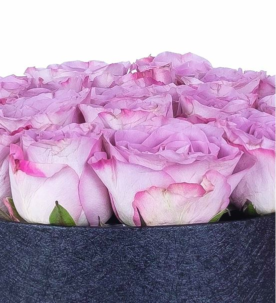 Boulogne Siyah Kutuda 19 Lilarenk Güller Aranjmanı