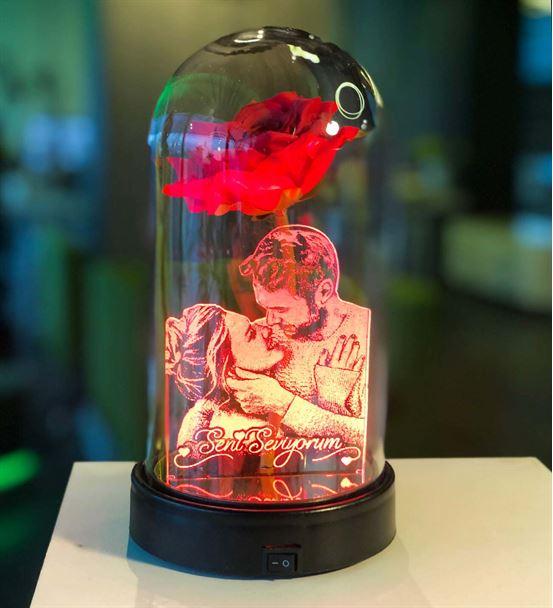 Cam Fanus Kırmızı Gül Resimli 3d Gece Lambası