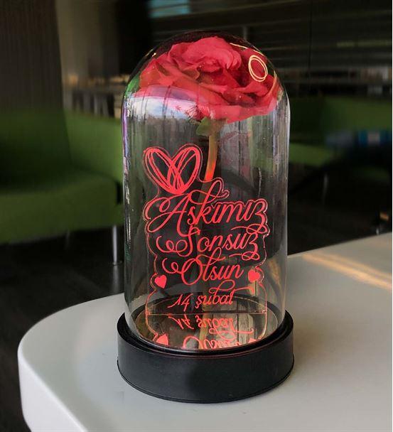 Cam Fanus Sevgililer Günü Mesaj2 Lamba Kırmızı Gül