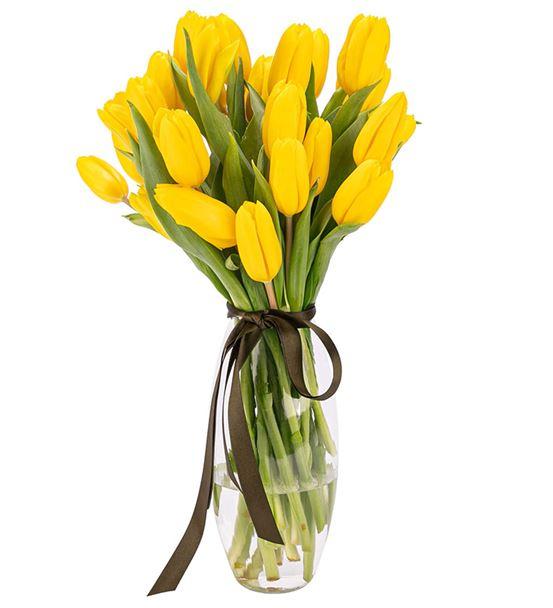 Cam Vazoda Sarı Lale Tasarım