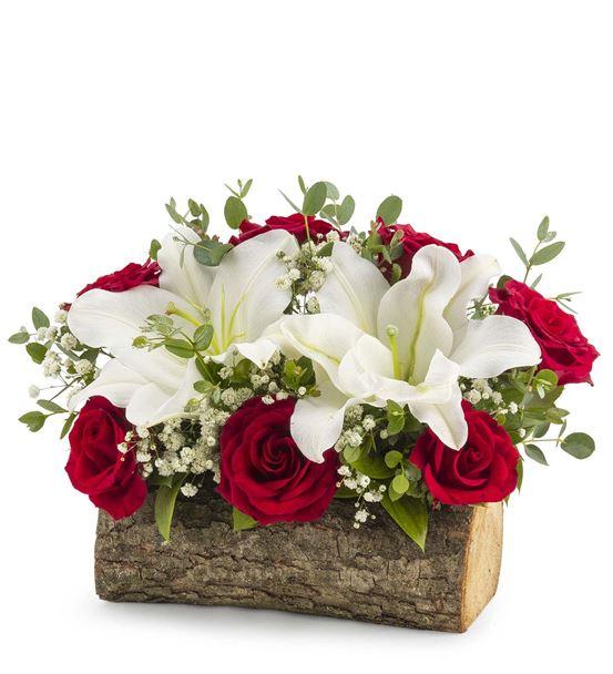 Dancing Zanussi Lilyum ve Kırmızı Güller