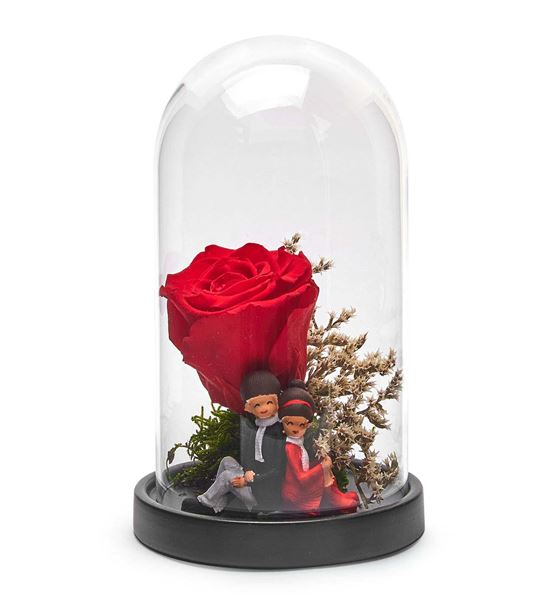 Fanusta Solmayan Kırmızı Gül ve Aşk