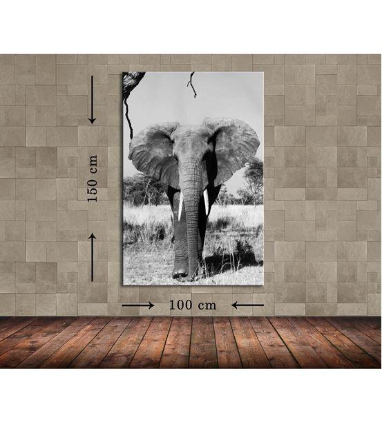 Fil 3 Büyük Boy  Kanvas Tablo 100x150 cm