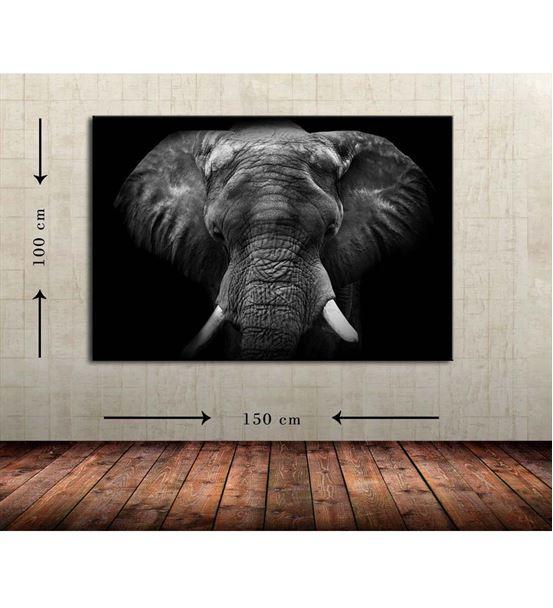 Fil Büyük Boy  Kanvas Tablo 100x150 cm