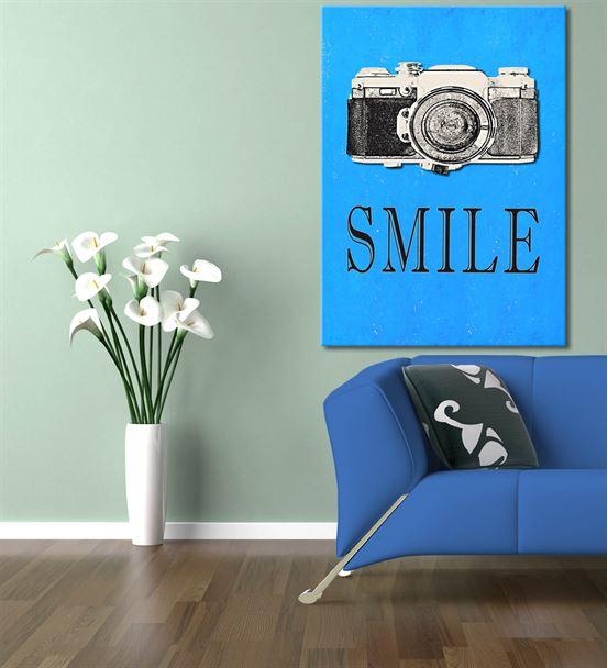 Fotoğraf Makinası Serisi B Kanvas Tablo 60x90 cm