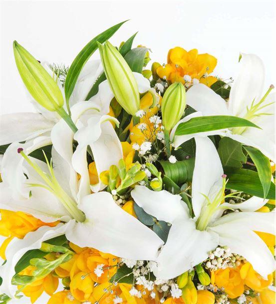 Güneş Bahçesi Kokulu Frezya Çiçekleri