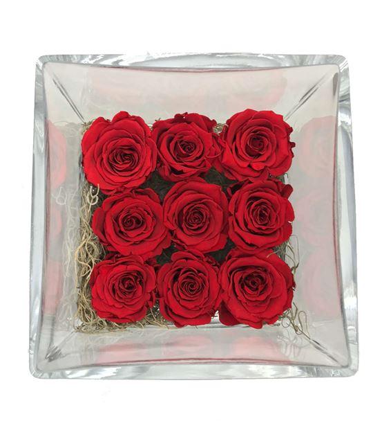 Kırmızı Solmayan Güller