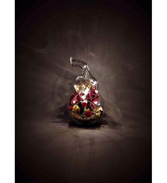 Kuru Çiçek Teraryum Pusetli Kız Bebek-Ebama0008