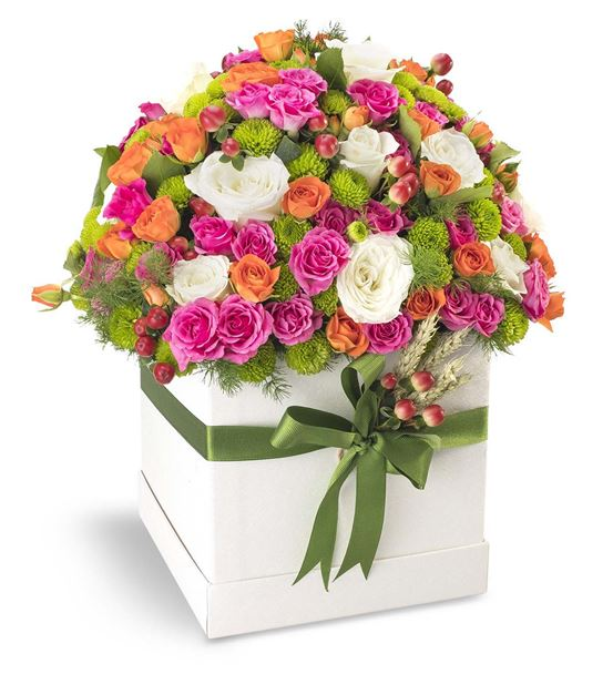 Kutuda Güllerin Dansı