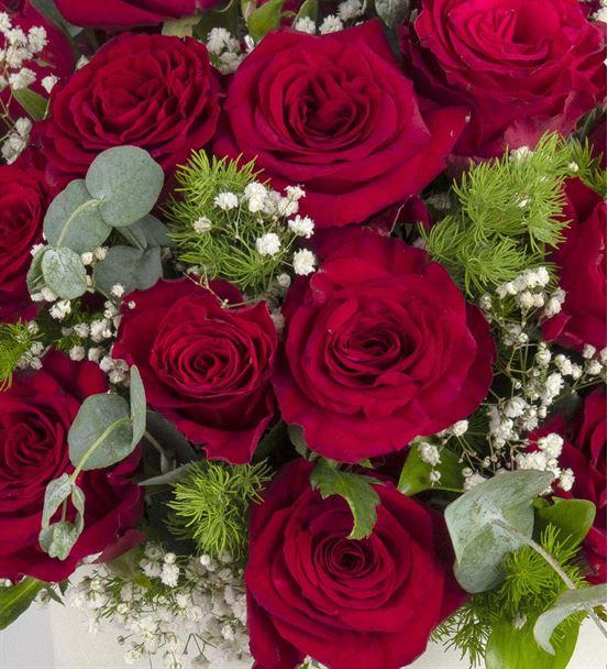 Love River Kutuda 30 Kırmızı Güller