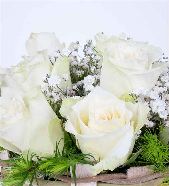 Martha Serisi 11 Beyaz Gül Çiçek Sepeti